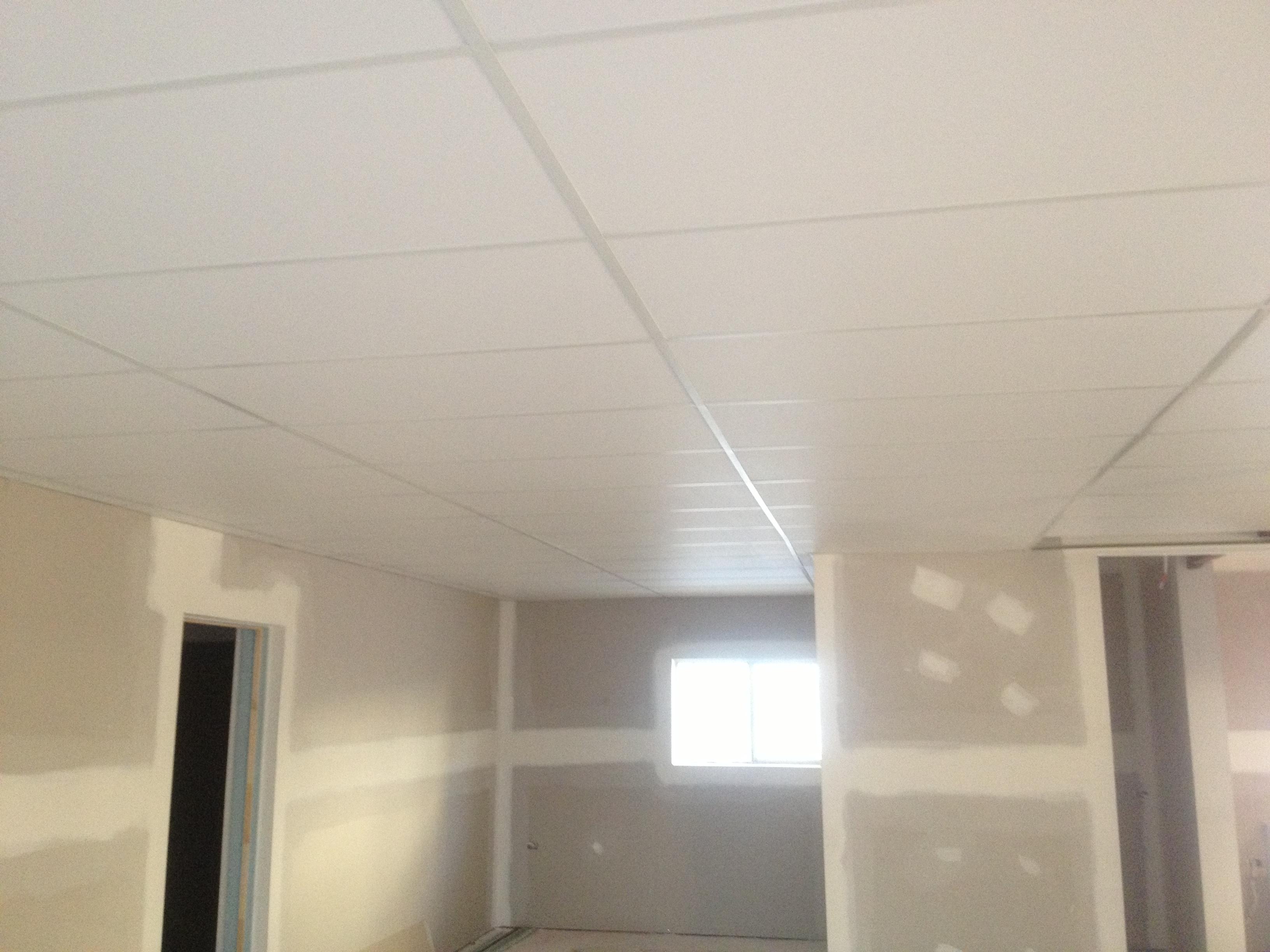 grid ceiling noosa